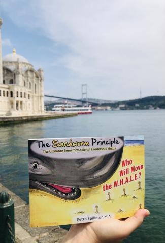 The Sandworm Principle is in Turkey